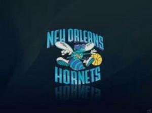 new logo a la nouvelle orleans hornet_mini-300x224